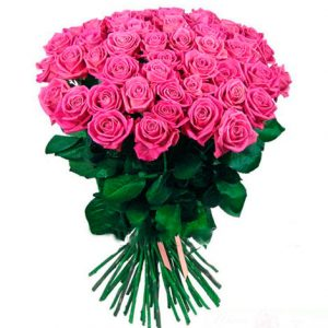 pink_roses1